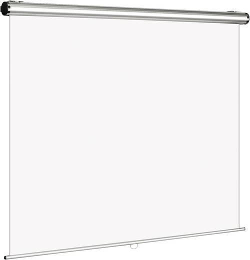 Rolloleinwand Reprolux Screens Cinelux Rollo 200214 180 x 180 cm Bildformat: 1:1