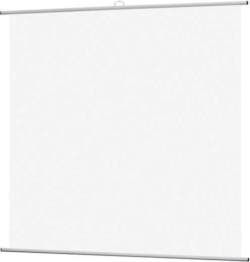 Rolloleinwand Reprolux Screens Ecran LKF 180 201714 180 x 180 cm Bildformat: 1:1