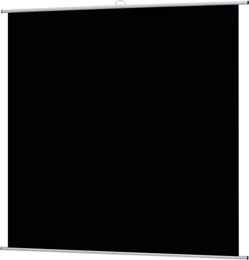 Rolloleinwand Reprolux Screens LKF 180 201714 180 x 180 cm Bildformat: 1:1