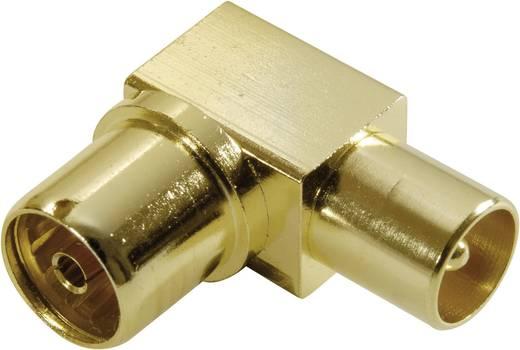 Vivanco Koaxial - Winkeladapter, vergoldet, vollmetal Antenne Steckverbinder