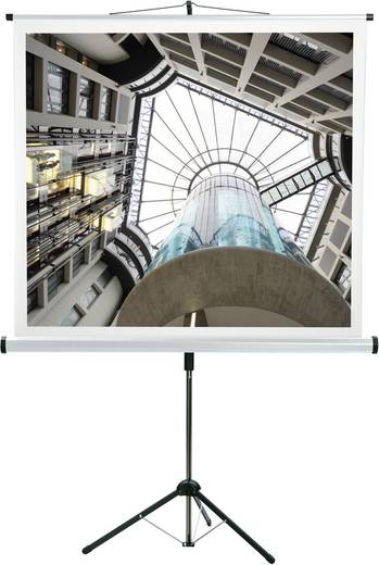 Medium CombiFlex Budget 16410 Rolloleinwand 150 x 150 cm Bildformat: 1:1, 4:3, 16:9