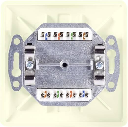 Netzwerkdose Unterputz Einsatz mit Zentralplatte und Rahmen CAT 5e 2 Port Setec 604680 Reinweiß