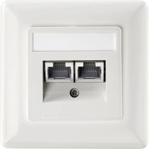 Netzwerkdose Unterputz Einsatz mit Zentralplatte und Rahmen CAT 6 Setec 649290 Reinweiß