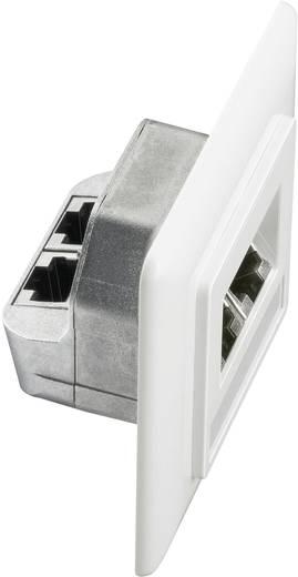 Netzwerkdose Unterputz Einsatz mit Zentralplatte und Rahmen CAT 5e 2 Port Setec 649285 Reinweiß