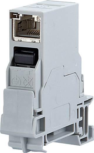 Netzwerkdose Hutschiene CAT 6 Metz Connect 1401206113KE Licht-Grau