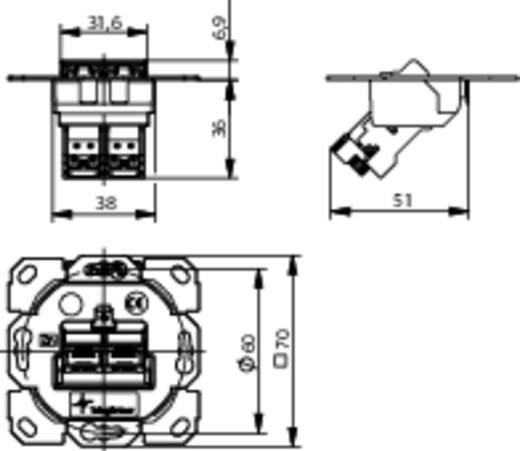 Netzwerkdose Unterputz Einsatz CAT 6a 2 Port Telegärtner
