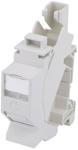 Netzwerkdose Hutschiene CAT 6a Telegärtner H02000A0086 Licht-Grau