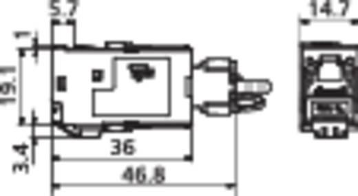 RJ45-Einbaumodul E-Dat CAT 6A Metz Connect 130B11-E