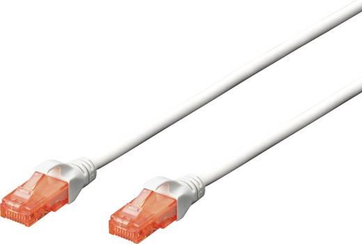 RJ45 Netzwerk Anschlusskabel CAT 6 U/UTP 3 m Weiß mit Rastnasenschutz Digitus Professional