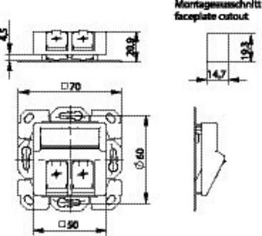 Netzwerkdose Unterputz Einsatz mit Zentralplatte Unbestückt 2 Port Telegärtner Alpinweiß