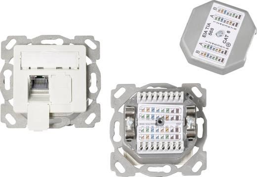 Netzwerkdose Unterputz Einsatz mit Zentralplatte CAT 6a 2 Port EFB Elektronik Reinweiß