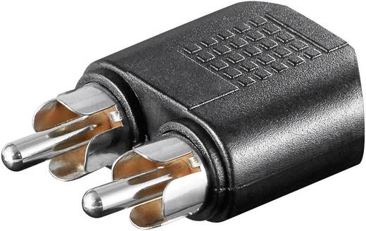 Cinch / Klinke Audio Y-Adapter [2x Cinch-Stecker - 1x Klinkenbuchse 3.5 mm] Schwarz Goobay