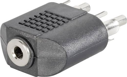 Cinch / Klinke Audio Y-Adapter [2x Cinch-Stecker - 1x Klinkenbuchse 3.5 mm] Schwarz SpeaKa Professional