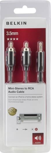 Cinch / Klinke Audio Anschlusskabel [2x Cinch-Stecker - 1x Klinkenstecker 3.5 mm] 5 m Schwarz vergoldete Steckkontakte B