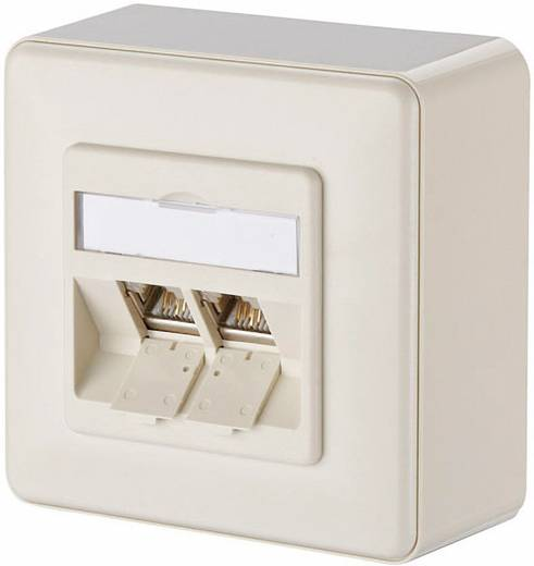 netzwerkdose cat 6 2 port metz connect perl wei kaufen. Black Bedroom Furniture Sets. Home Design Ideas