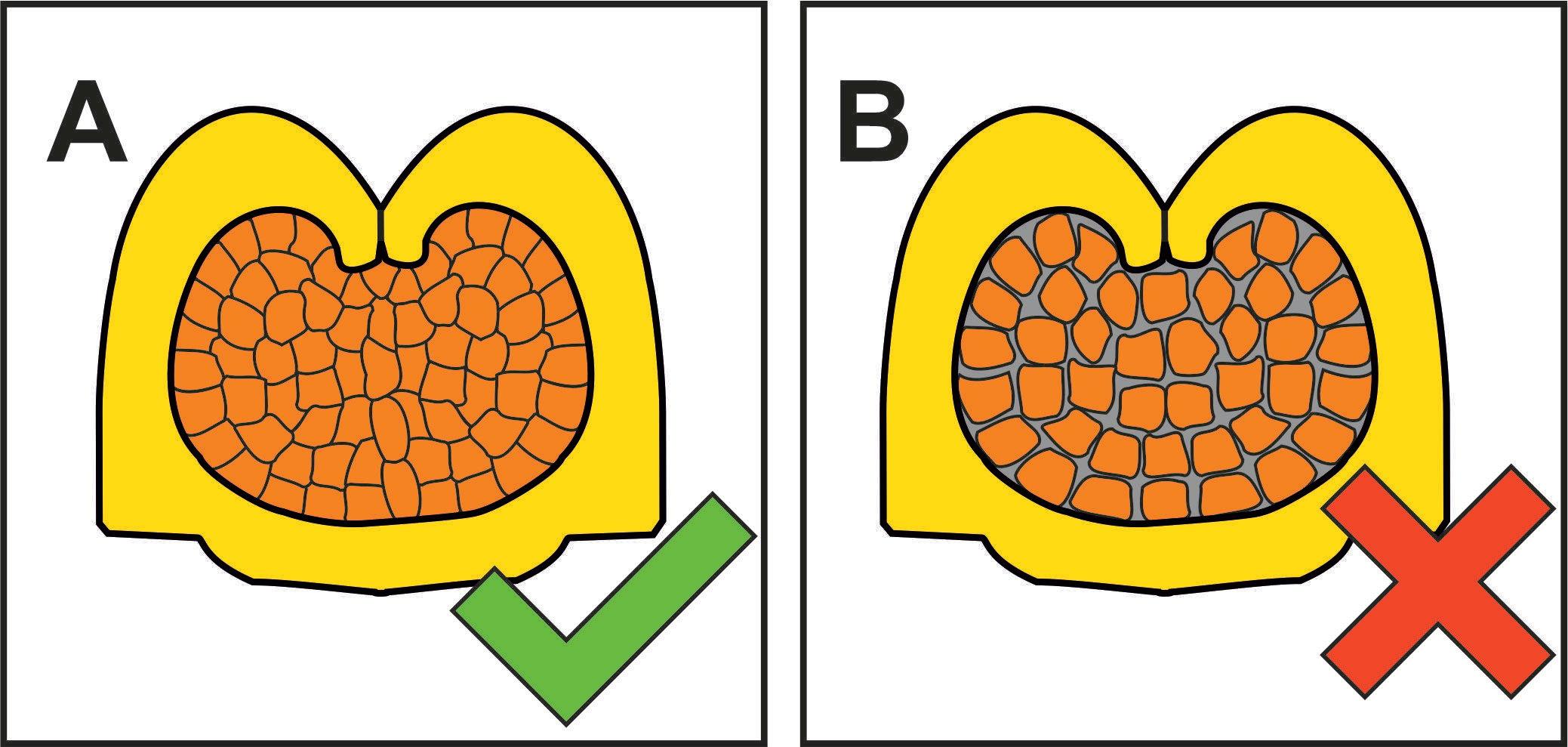 Querschnitt einer korrekten und fehlerhaften Crimpstelle