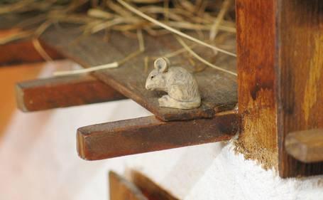 De kleine muis wordt niet altijd op het eerste gezicht opgemerkt.