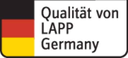 Schlauchleitung H03VV-F 2 x 0.75 mm² Weiß LappKabel 49900065 Meterware