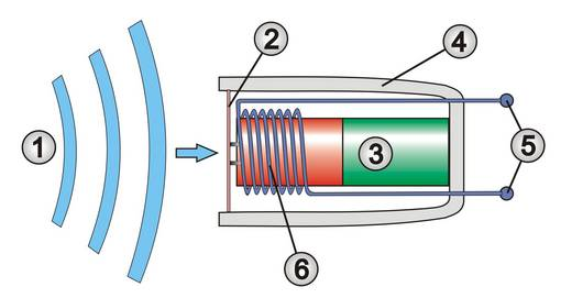 Schematische Darstellung eines Tauchspulenmikrofons