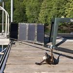 Solar Panel Falcon