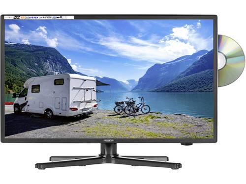 Reflexion LED-TV 24 inch Energielabel F (A - G) CI+*, DVB-C, DVB-S2, DVB-T2 HD, PVR ready, DVD-speler, Full HD Zwart (glanzend)