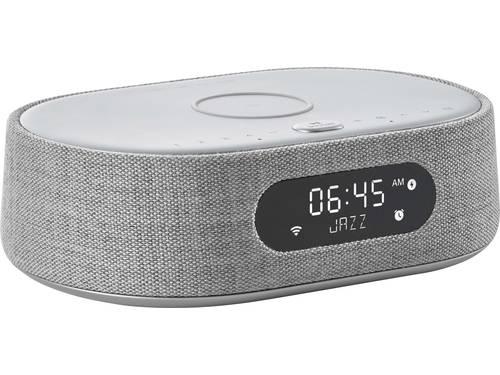 Harman Kardon Citation Oasis Multiroom luidspreker DAB+, Bluetooth, Air-play AirPlay, Google Assistant geïntegreerd, WiFi Grijs