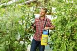Pressure sprayer prima 3, incl. spray screen