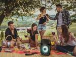 Party loudspeaker PartyBoomBox300