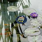 FIAP Solar Digital Floating Thermometer