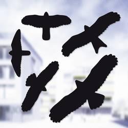 Vinduesdekoration fuglebillede påklæbes Afskrækning Swissinno Bird sticker Sort 5 stk