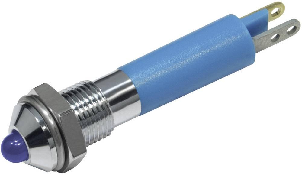 LED signalna lučka, modra 12 V/DC CML 19020257