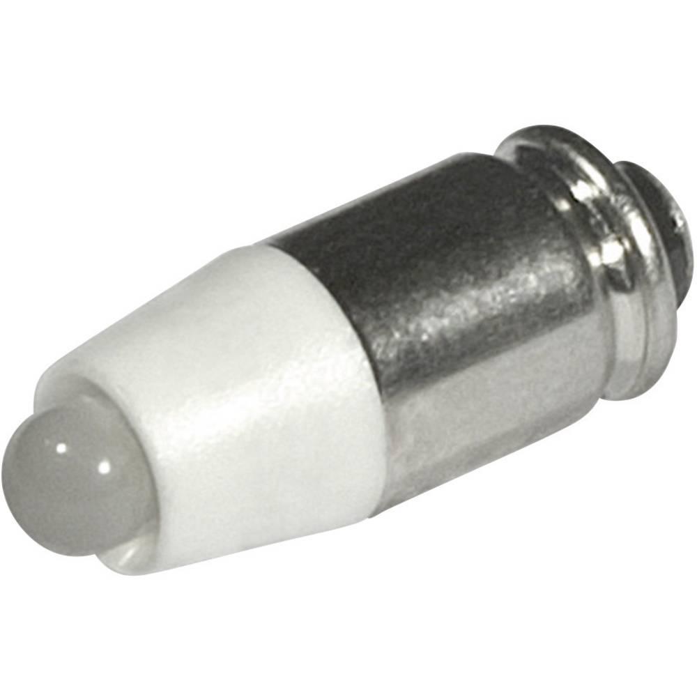 LED žarnica T1 3/4 MG topla bela 24 V/DC, 24 V/AC 1260 mcd CML 1512535L3