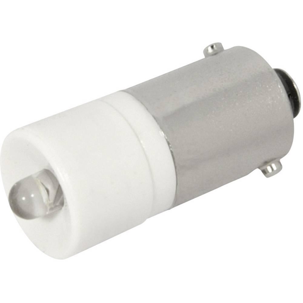 LED žarnica BA9s hladno bela 12 V/DC, 12 V/AC 1200 mcd CML 1860225W3D