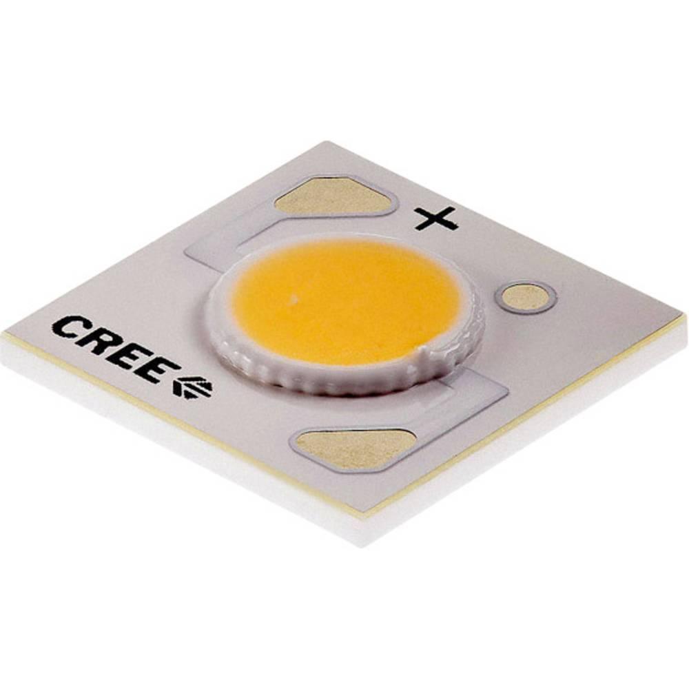 HighPower LED topla bela 10.9 W 368 lm 115 ° 37 V 250 mA CREE CXA1304-0000-000N00A40E7