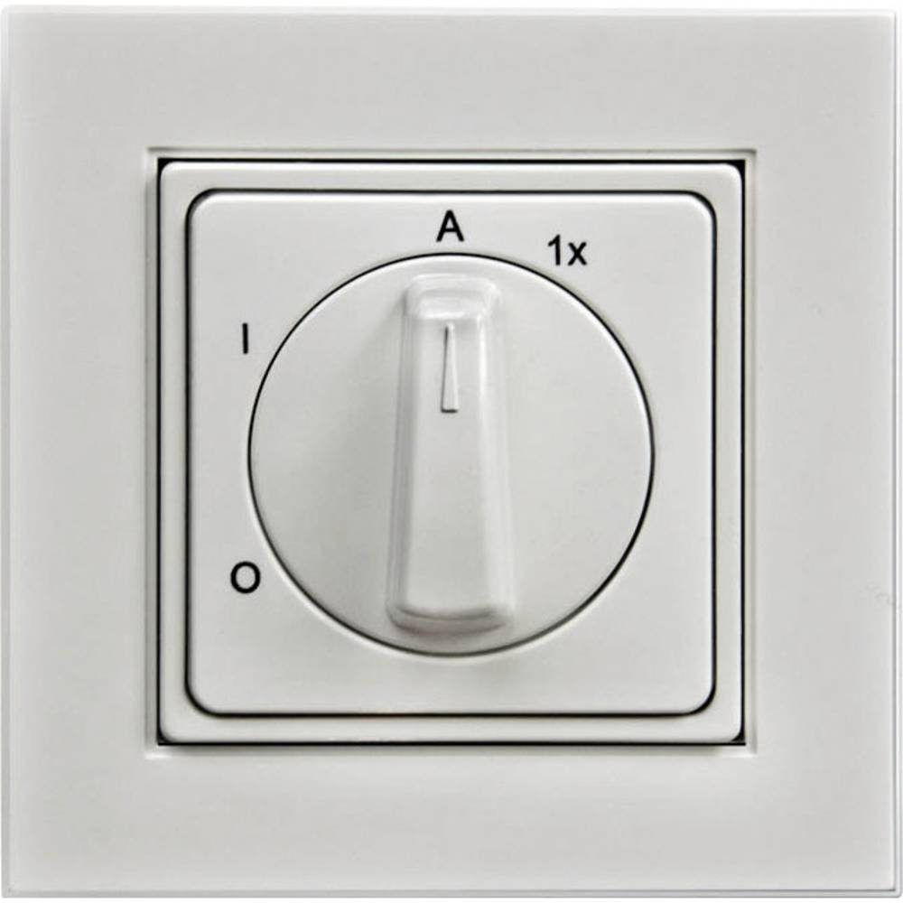 Outdoor light switch IP20 Pure white Arnold Elek from Conrad.com