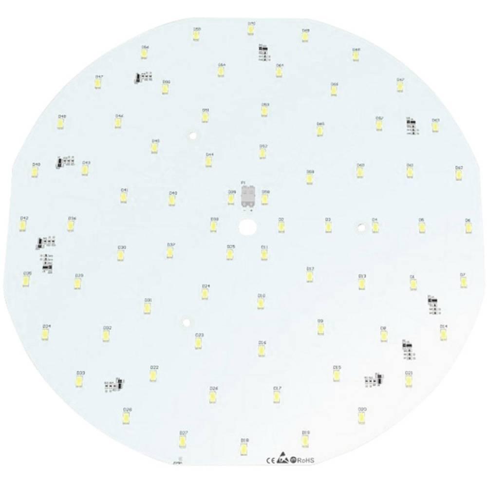 LED modul, bijela 31.20 W 3241 lm 120 ° 24 V Barthelme 50762933