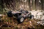 1:10 Electric Buggy Dune Fighter 4WD kit