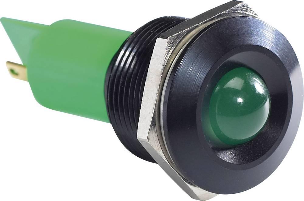 LED-signallampe APEM Q19P1BXXG24AE 24 V/DC, 24 V/AC 20 mA Grøn