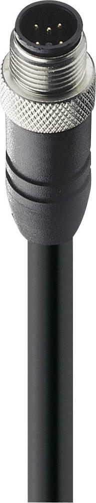 Priključni kabel, M12 raven vtič, št. polov: 5 0935 253 104/15M Belden vsebina: 1 kos