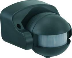 Utanpåliggande, Vägg PIR-rörelsedetektor GAO 180 ° IP44 Svart