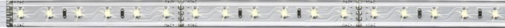 Razširitev za LED-trakove z vtičem 24 V 50 cm toplo-bele barve Paulmann MaxLED 70661