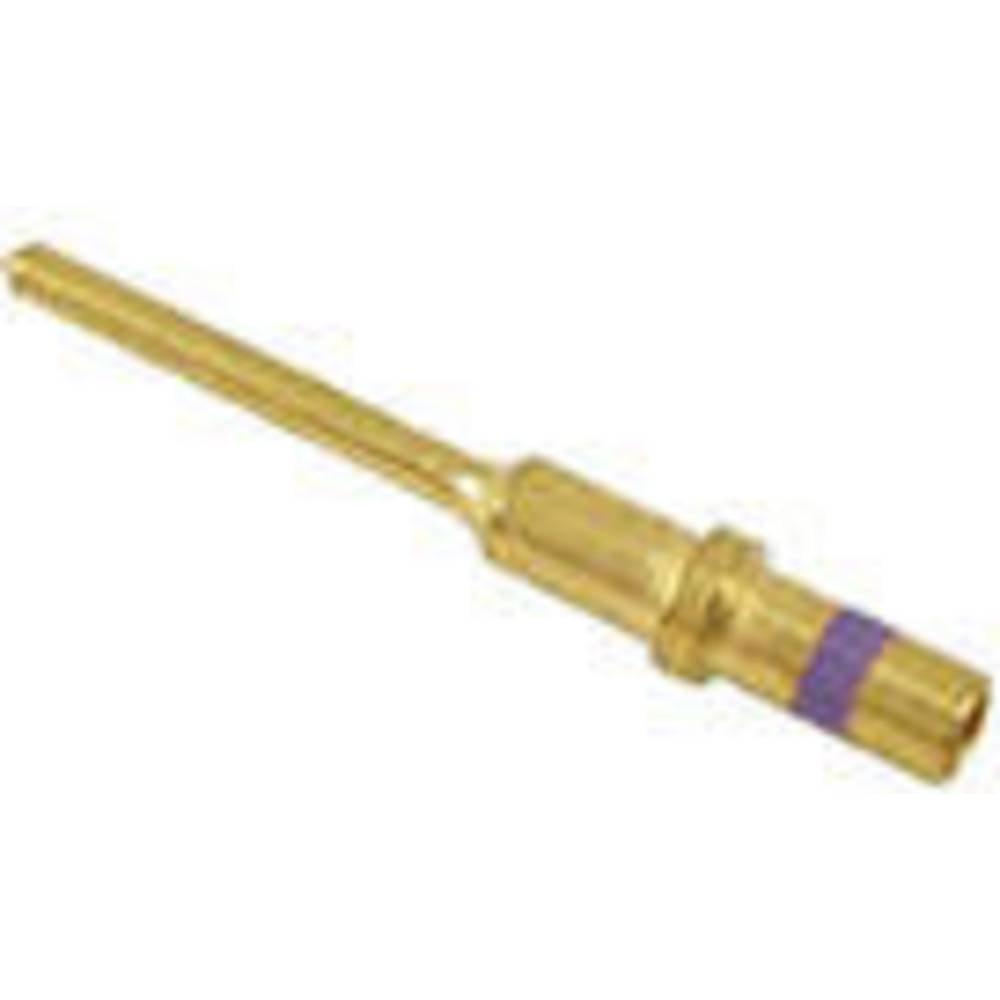 Dodatna oprema za vtični priključek DT serija, moški kontakt 7.5 A 0460-010-2031 nemški 1 kos
