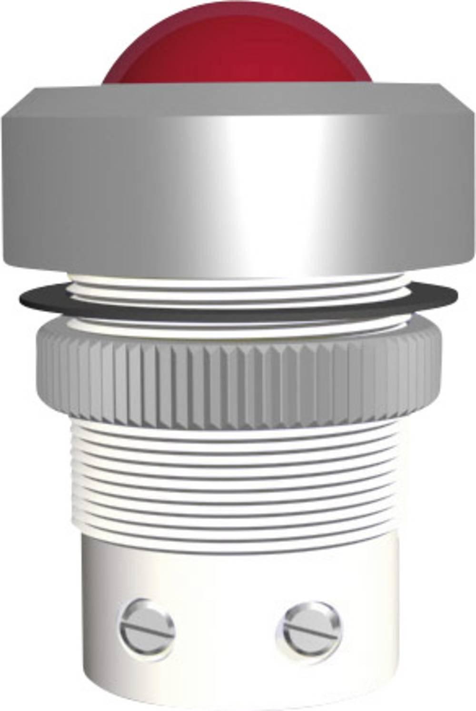 LED signalno svjetlo, ultra zeleno 230 V/AC Signal Construct SMTD22738
