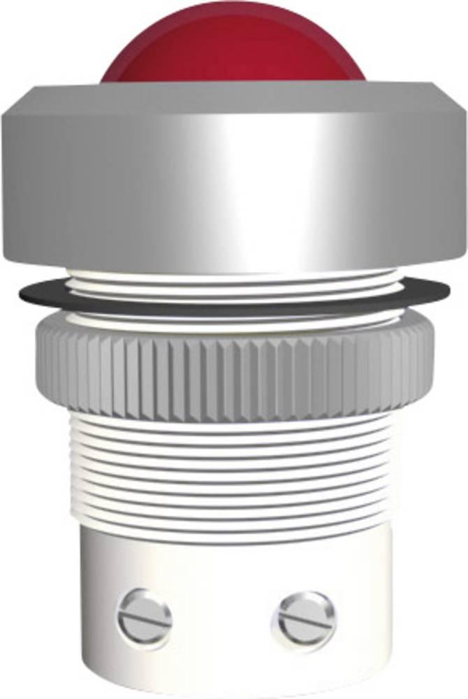 LED-signallampe Signal Construct SMTD22134 24 V/DC, 24 V/AC Gul