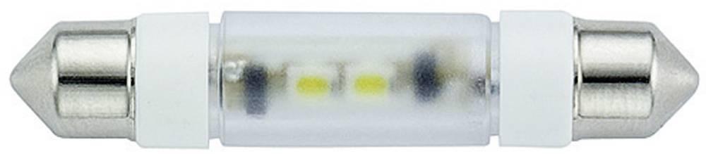 LED sofitna žarnica, bela 24 V/DC, 24 V/AC 800 mcd Signal Construct MSOE083964