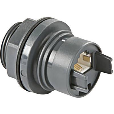 Image of Device socket RJ45 Socket, built-in Buccaneer 6000 Black Bulgin PXP6033TP/E 1 pc(s)
