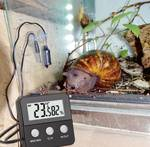 Terra Check Digital thermo-hygrometer
