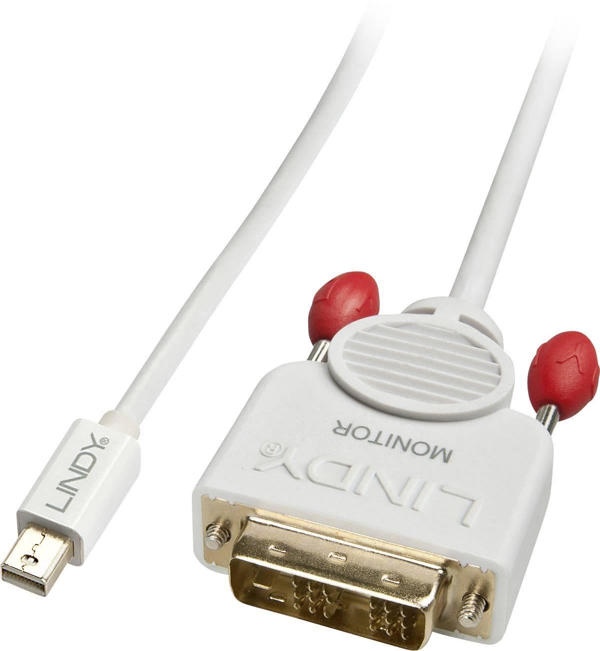 LINDY DisplayPort-Kabel an DVI 2 m