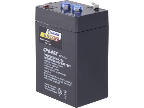 Loodaccu 6 V 4.5 Ah Conrad energy 250116 Loodvlies (AGM)