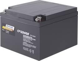 Blybatteri Conrad energy 250226 Bly AGM 12 V 24 Ah